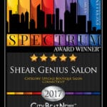 sg-spectrum-award-excellence-in-customer-service-2017
